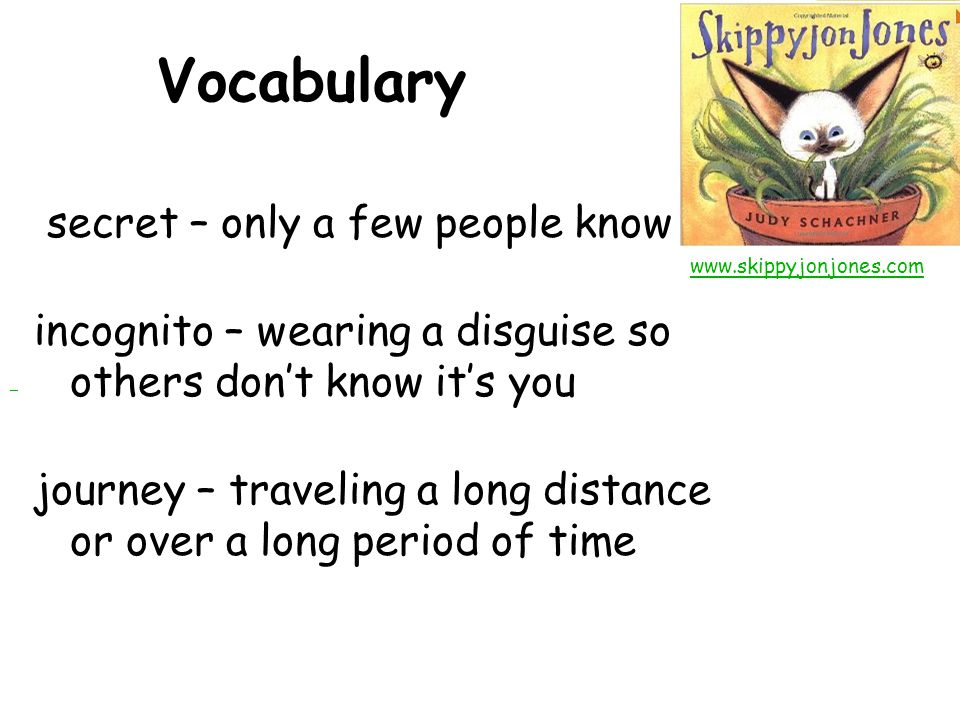 Vocabulary secret – only a few people know incognito – wearing a disguise so others don't know it's you journey – traveling a long distance or over a long period of time www.skippyjonjones.com