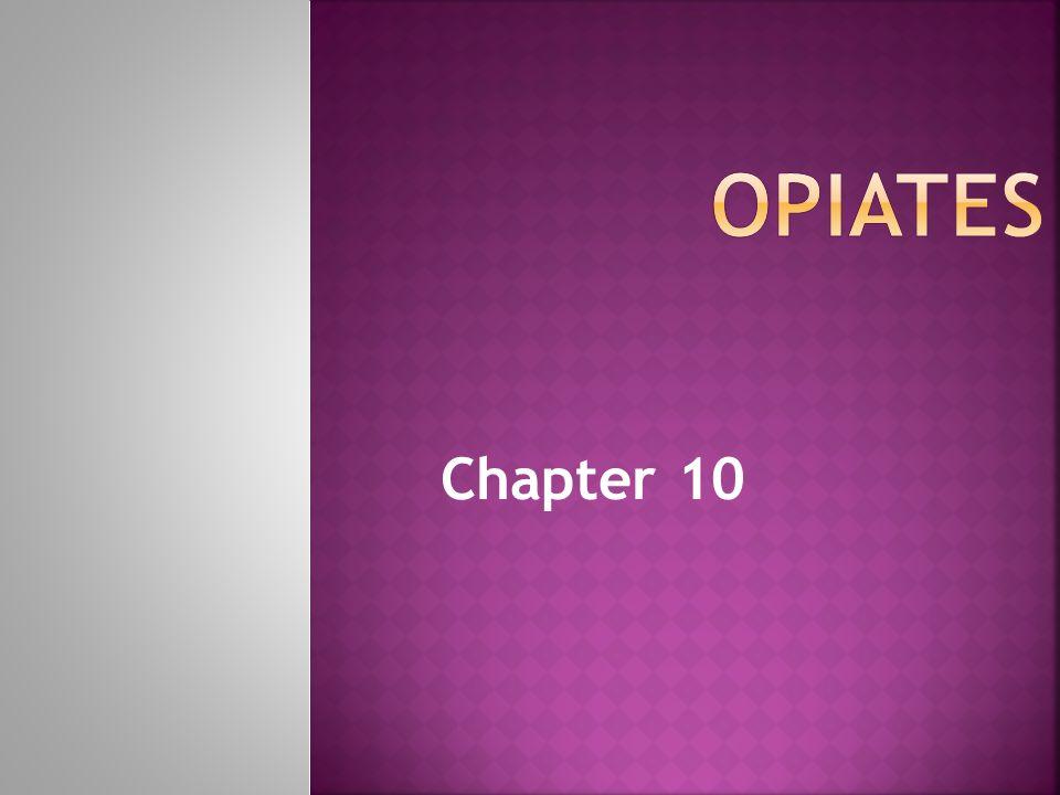 Opiates  alkaloids found in the opium poppy (Papaver somniferum)  [Gk.