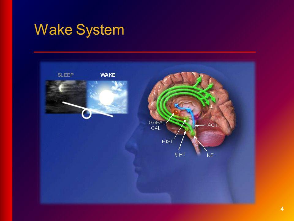4 Wake System ___________________________
