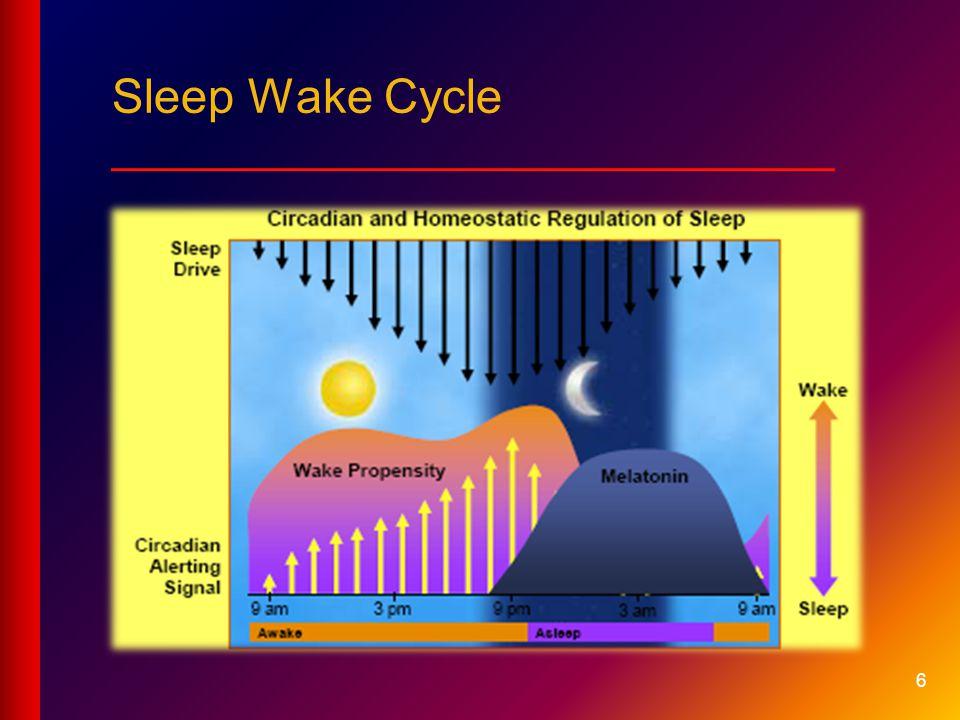 6 Sleep Wake Cycle ___________________________