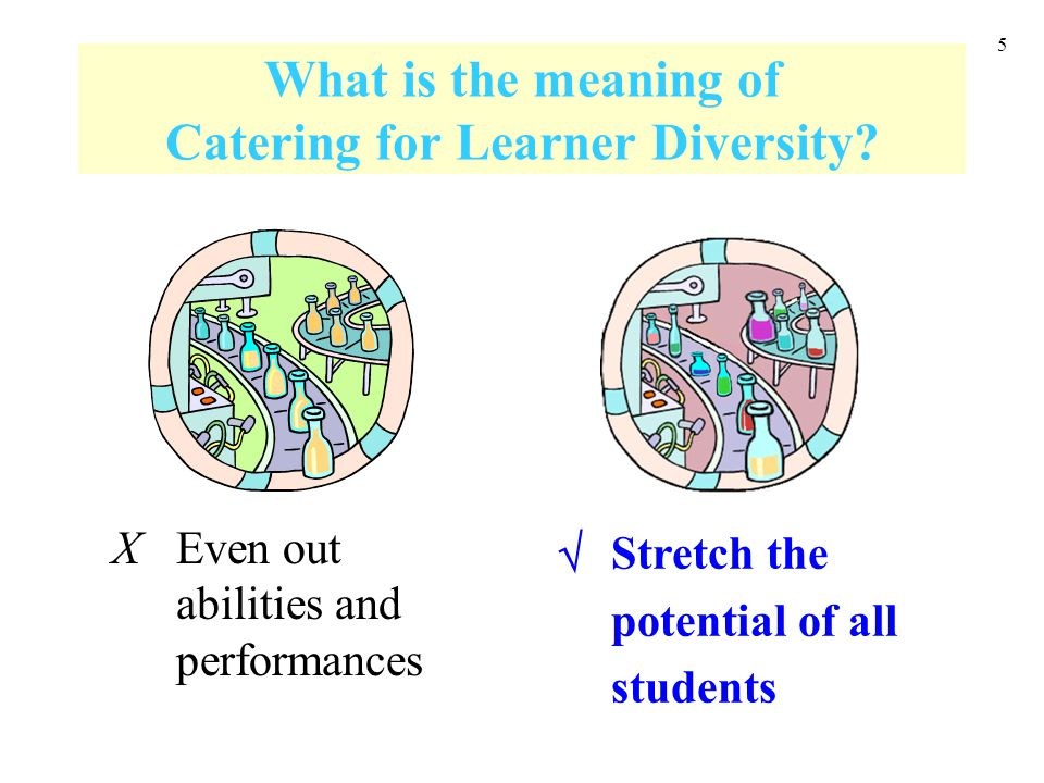 5 What is the meaning of Catering for Learner Diversity? Even out abilities and performances Stretch the potential of all students X 