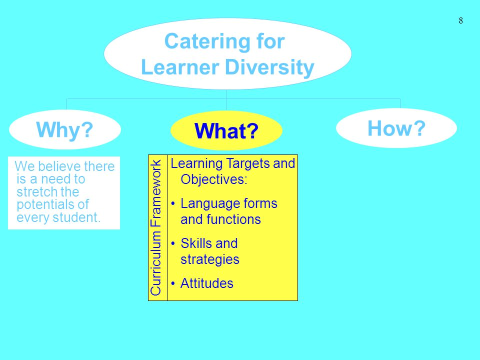 8 Catering for Learner Diversity Why? We believe there is a need to stretch the potentials of every student. How? What? Learning Targets and Objective