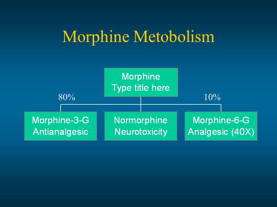 Morphine Metobolism 80%10%