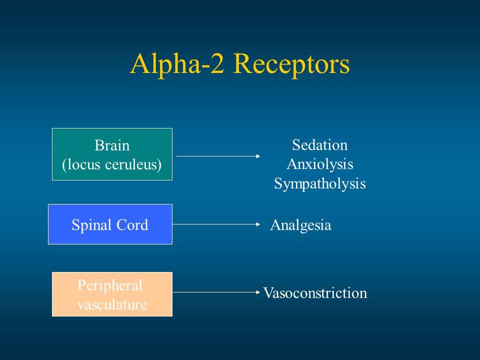 Alpha-2 Receptors Brain (locus ceruleus) Spinal Cord Peripheral vasculature Sedation Anxiolysis Sympatholysis Analgesia Vasoconstriction