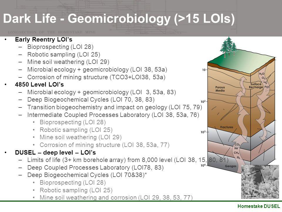 Homestake DUSEL Early Reentry LOI's –Bioprospecting (LOI 28) –Robotic sampling (LOI 25) –Mine soil weathering (LOI 29) –Microbial ecology + geomicrobi