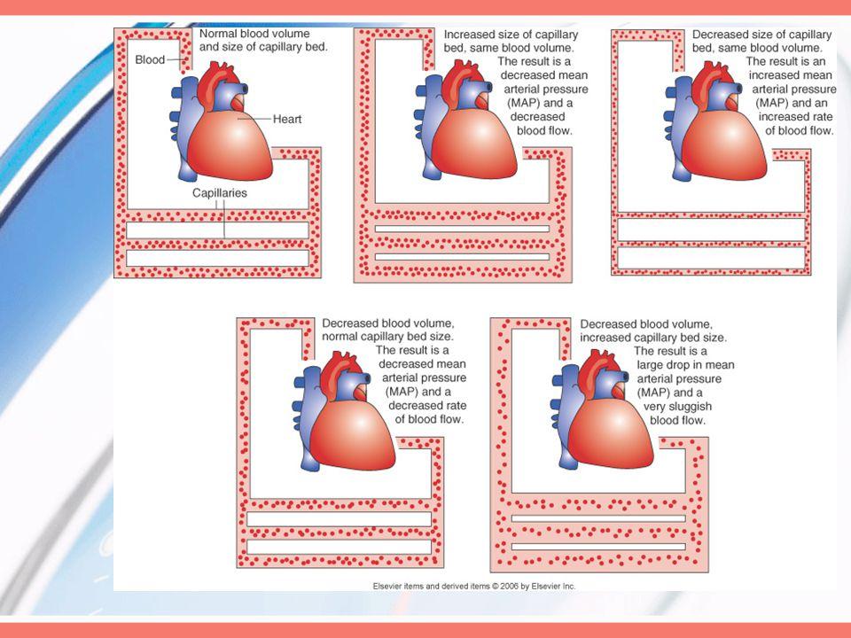 Phase 1/hyperdynamic/ warm shock Endotoxins react w/WBC & vessel walls  inflammatory rxn,  stimulate heart   CO  tachycardia,  SV,  BP,  vasodilation,  pink mucous membrane,  warm skin  bounding peripheral pulses RR & depth  resp alkalosis,  crackles &  breath sounds