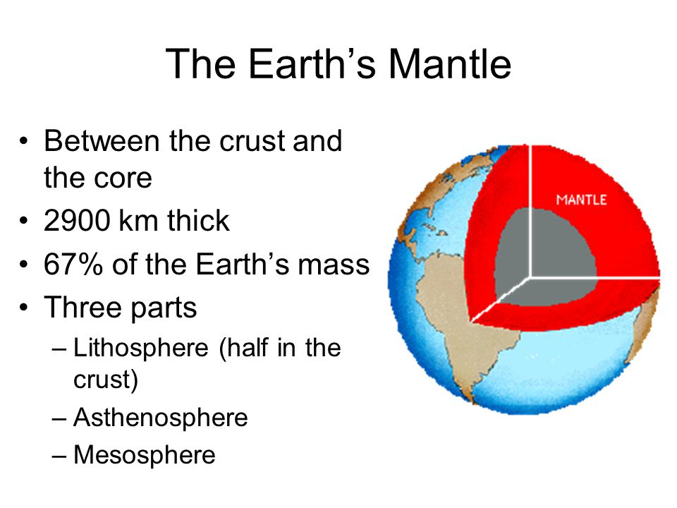 The Earth's Mantle Between the crust and the core 2900 km thick 67% of the Earth's mass Three parts –Lithosphere (half in the crust) –Asthenosphere –M