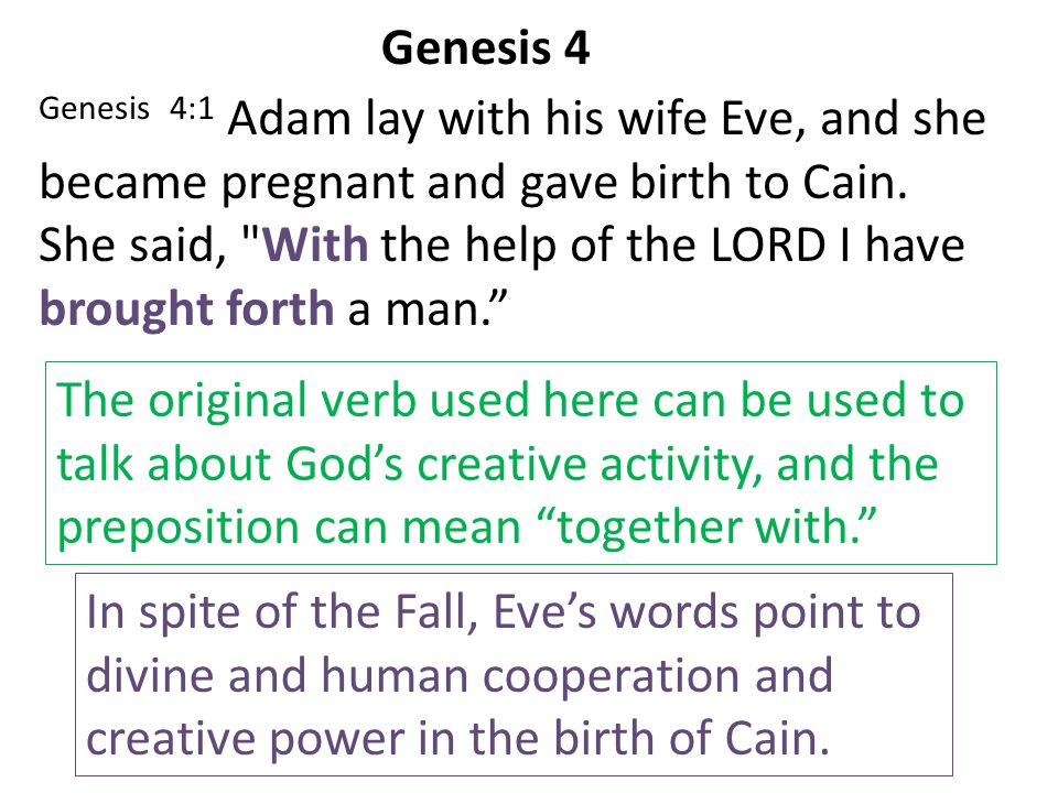 Genesis 4:1 Adam lay with his wife Eve, and she became pregnant and gave birth to Cain. She said,