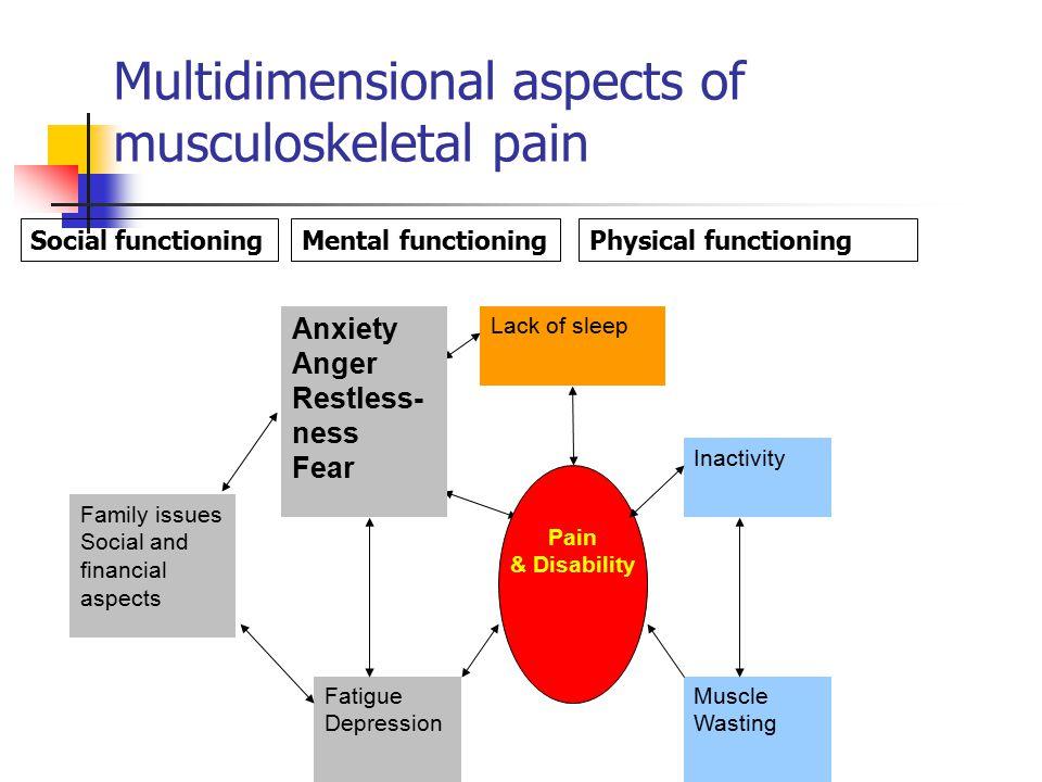 Comorbidity of chronic musculoskeletal pain (Lu, Zheng, et al 2010) Slide deleted.