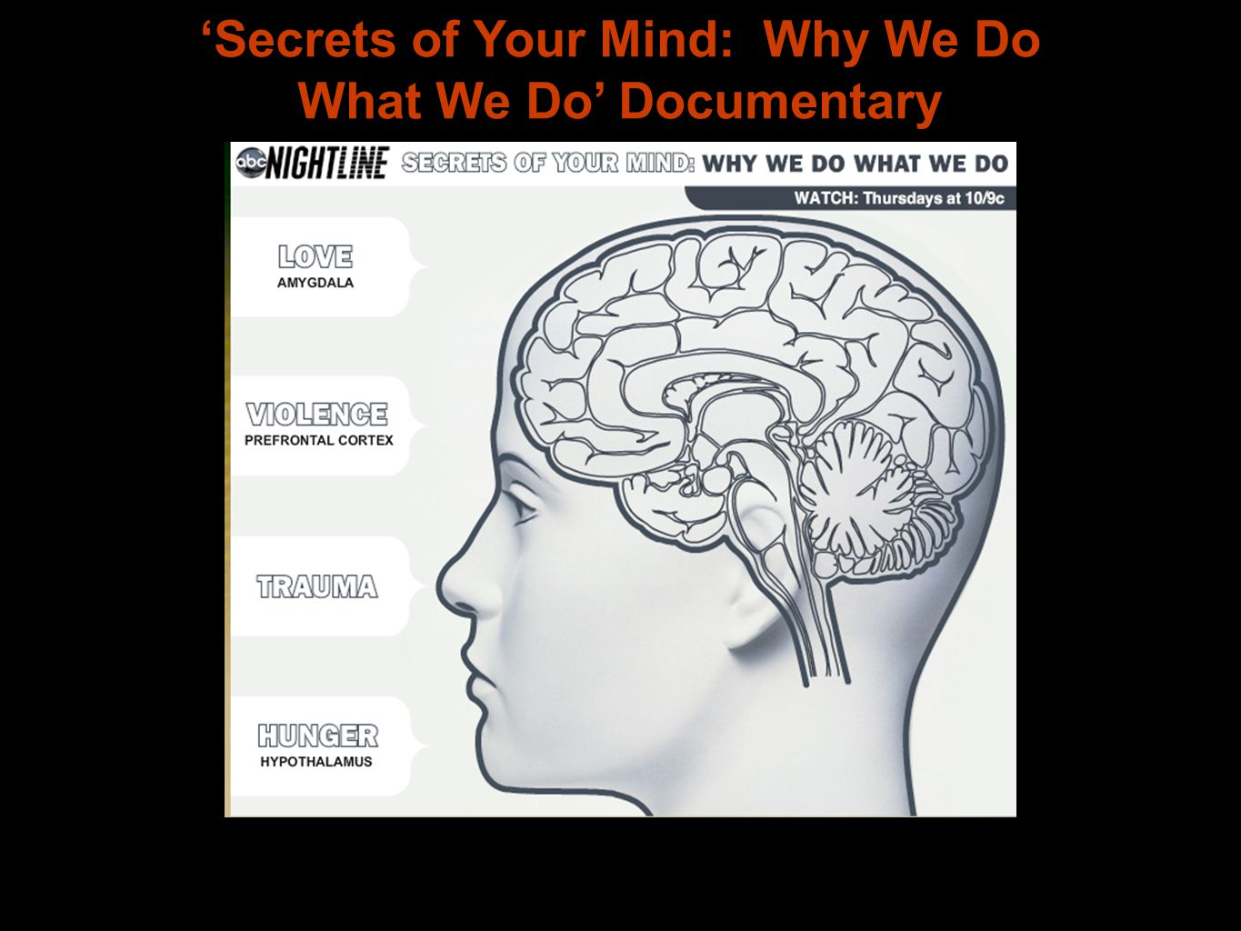 'Secrets of Your Mind: Why We Do What We Do' Documentary