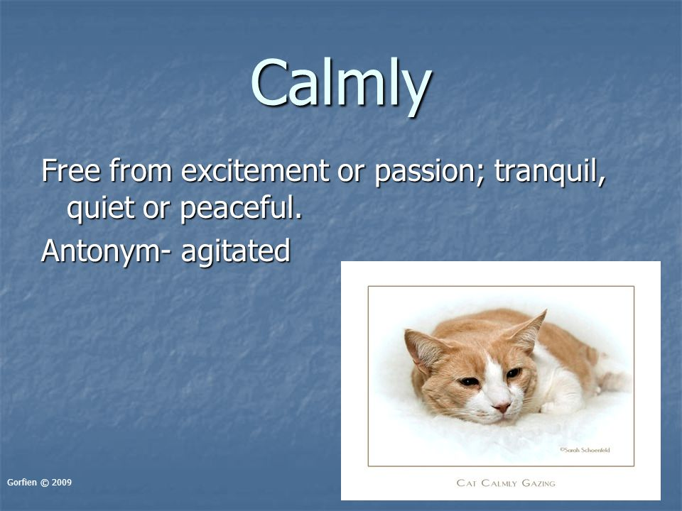 Calmly Free from excitement or passion; tranquil, quiet or peaceful. Antonym- agitated Gorfien © 2009