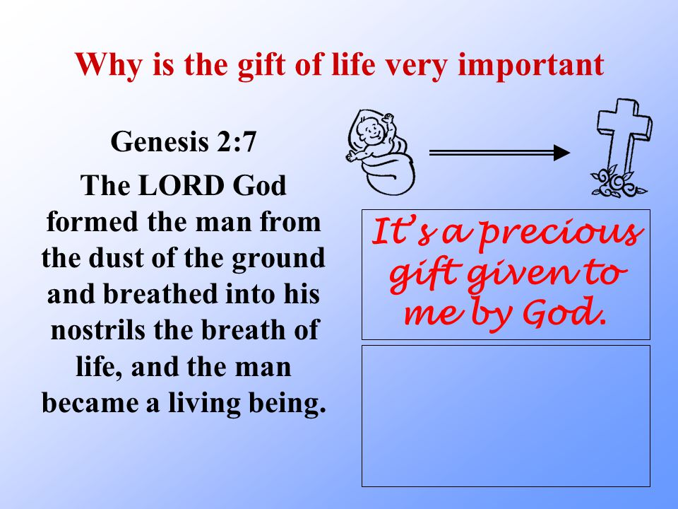 Why is the gift of life very important 2 Corinthians 6:1-2 As God's fellow workers we urge you not to receive God's grace in vain.