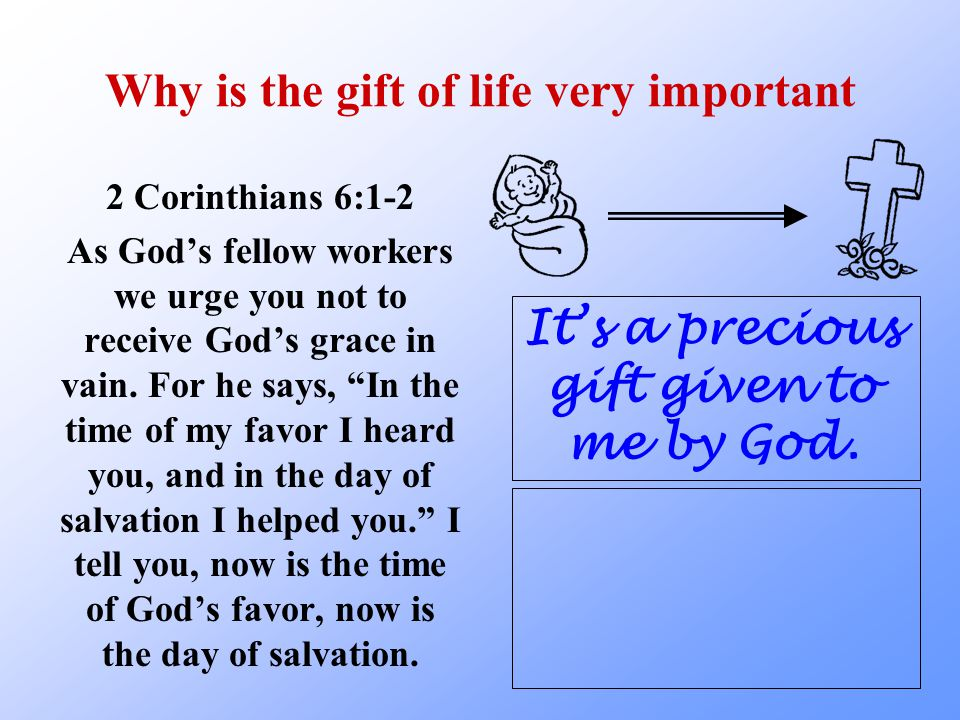 How do we sin against God's precious gift of life.
