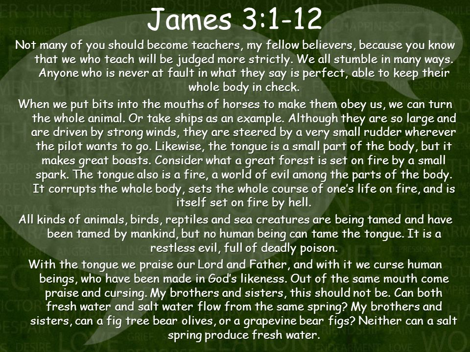 James 3:1-12 Not many of you should become teachers, my fellow believers, because you know that we who teach will be judged more strictly.