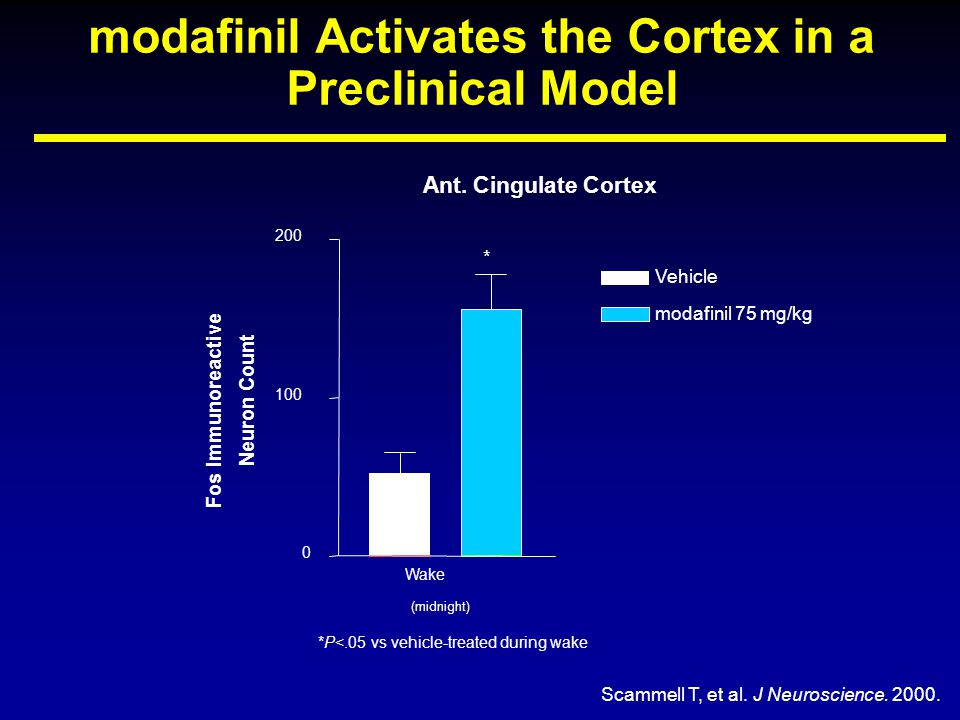 modafinil Activates the Cortex in a Preclinical Model *P<.05 vs vehicle-treated during wake Ant.