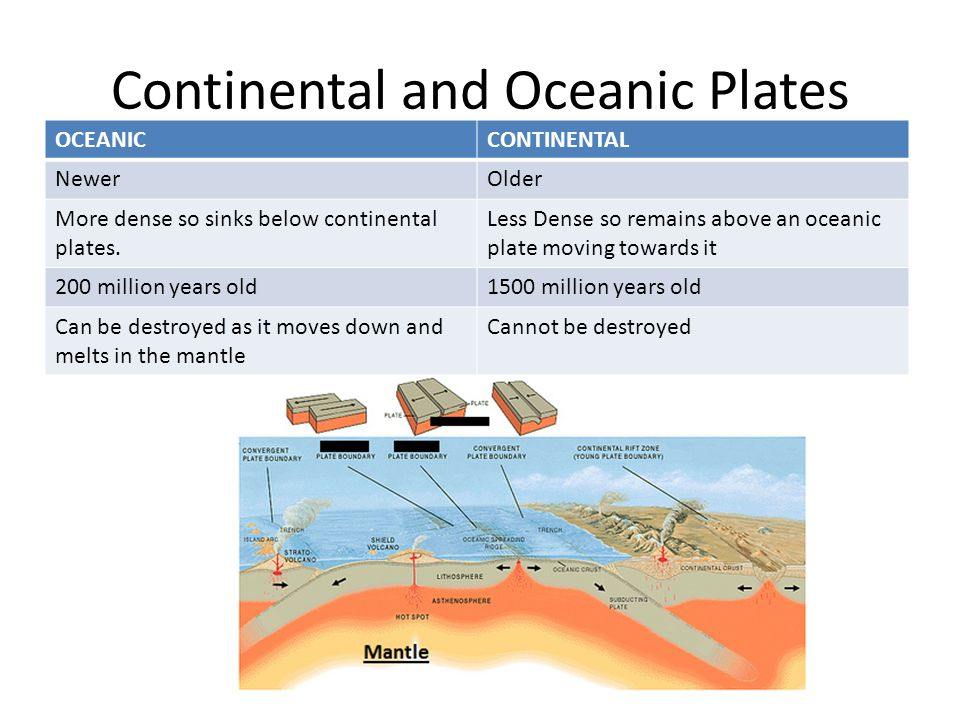 Continental and Oceanic Plates OCEANICCONTINENTAL NewerOlder More dense so sinks below continental plates. Less Dense so remains above an oceanic plat