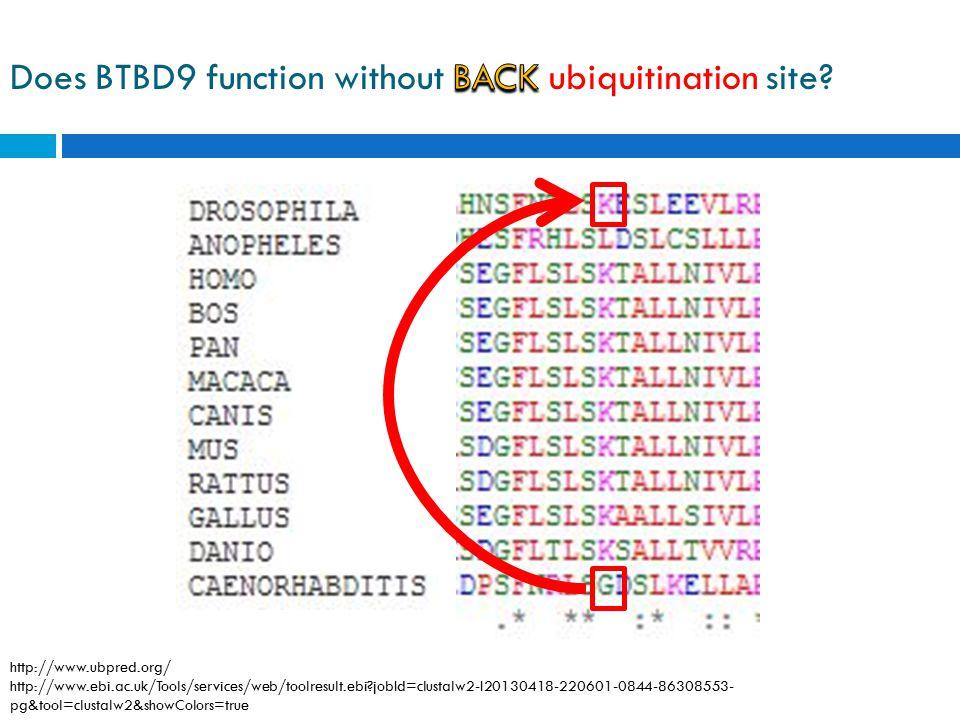 http://www.ubpred.org/ http://www.ebi.ac.uk/Tools/services/web/toolresult.ebi?jobId=clustalw2-I20130418-220601-0844-86308553- pg&tool=clustalw2&showCo