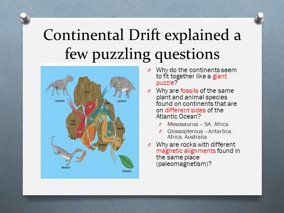 Continental Drift explained a few puzzling questions O Why do the continents seem to fit together like a giant puzzle.