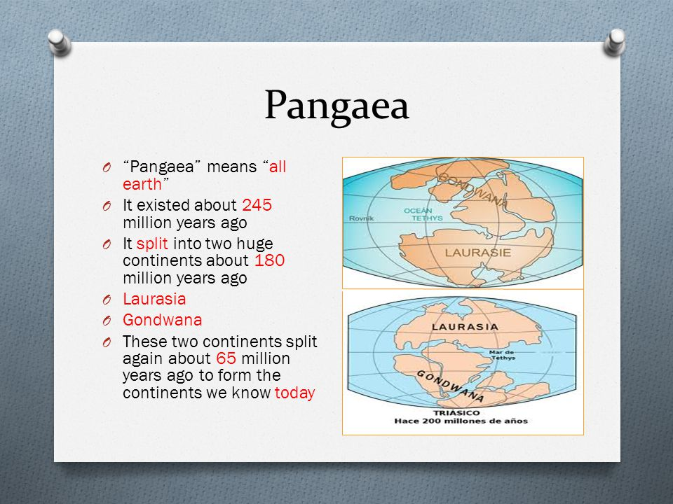 """Pangaea O """"Pangaea"""" means """"all earth"""" O It existed about 245 million years ago O It split into two huge continents about 180 million years ago O Laura"""