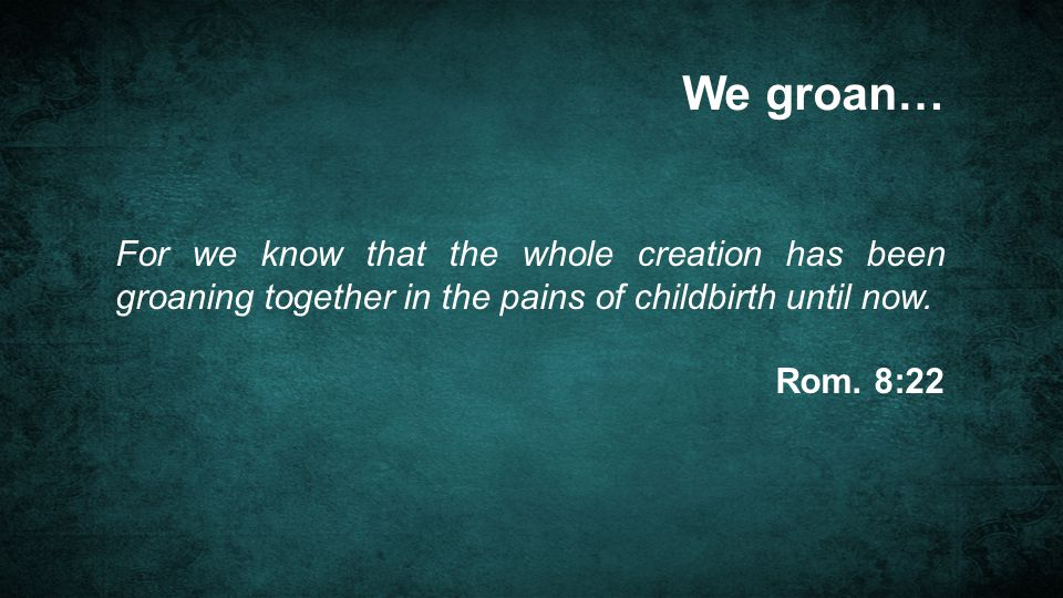 We groan… For we know that the whole creation has been groaning together in the pains of childbirth until now. Rom. 8:22