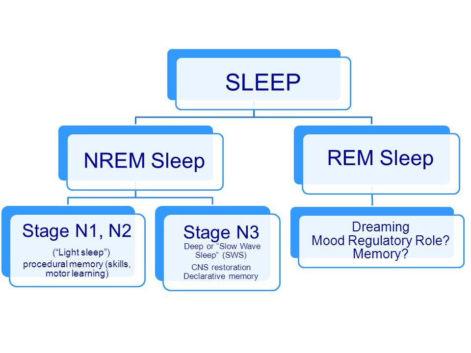 SLEEP NREM Sleep Stage N1, N2 ( Light sleep ) procedural memory (skills, motor learning) Stage N3 Deep or Slow Wave Sleep (SWS) CNS restoration Declarative memory REM Sleep Dreaming Mood Regulatory Role.