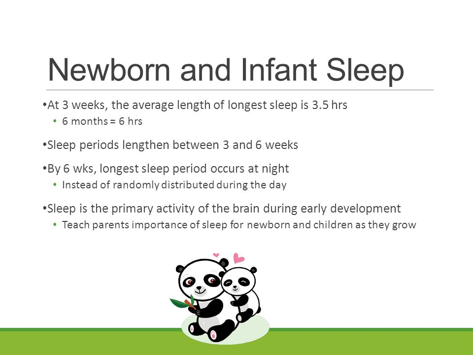 Newborn and Infant Sleep At 3 weeks, the average length of longest sleep is 3.5 hrs 6 months = 6 hrs Sleep periods lengthen between 3 and 6 weeks By 6 wks, longest sleep period occurs at night Instead of randomly distributed during the day Sleep is the primary activity of the brain during early development Teach parents importance of sleep for newborn and children as they grow