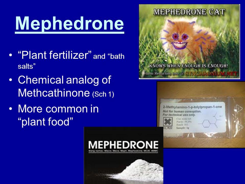 Plant Food = Mephedrone