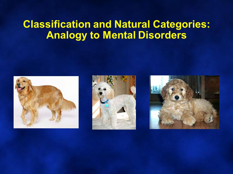 Classification and Natural Categories: Analogy to Mental Disorders