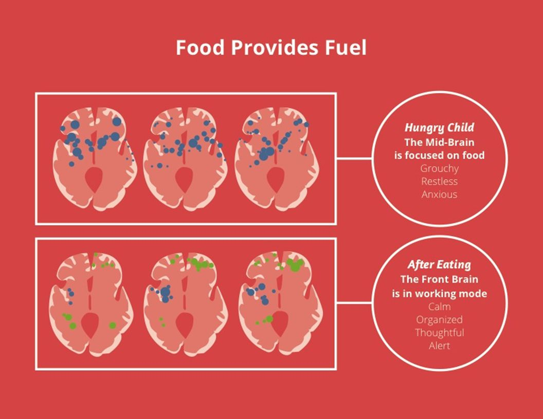 Food Provides Fuel Hungry Child The Mid-Brain is focused on food Grouchy Restless Anxious After Eating The Front Brain is in working mode Calm Organized Thoughtful Alert