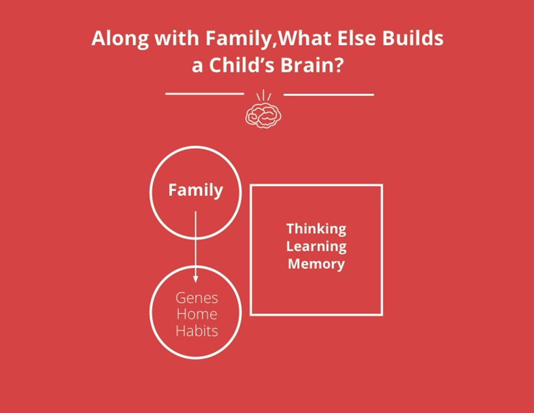 Family Thinking Learning Memory Genes Home Habits Along with Family,What Else Builds a Child's Brain
