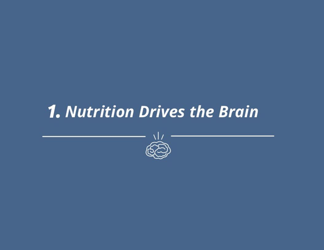 1. Nutrition Drives the Brain