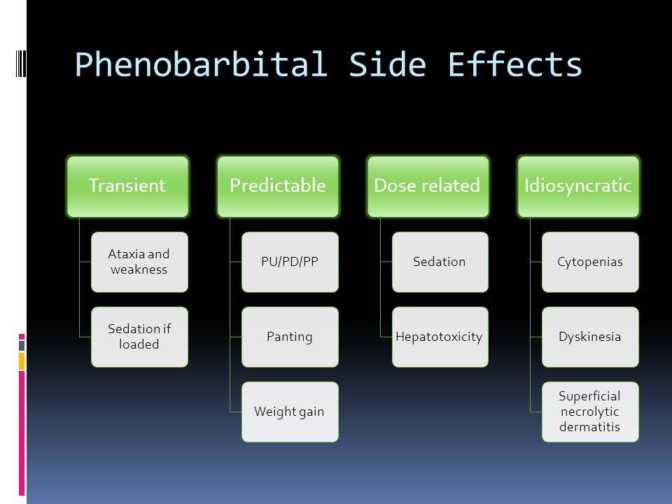 Phenobarbital Side Effects Transient Ataxia and weakness Sedation if loaded Predictable PU/PD/PPPantingWeight gain Dose related SedationHepatotoxicity