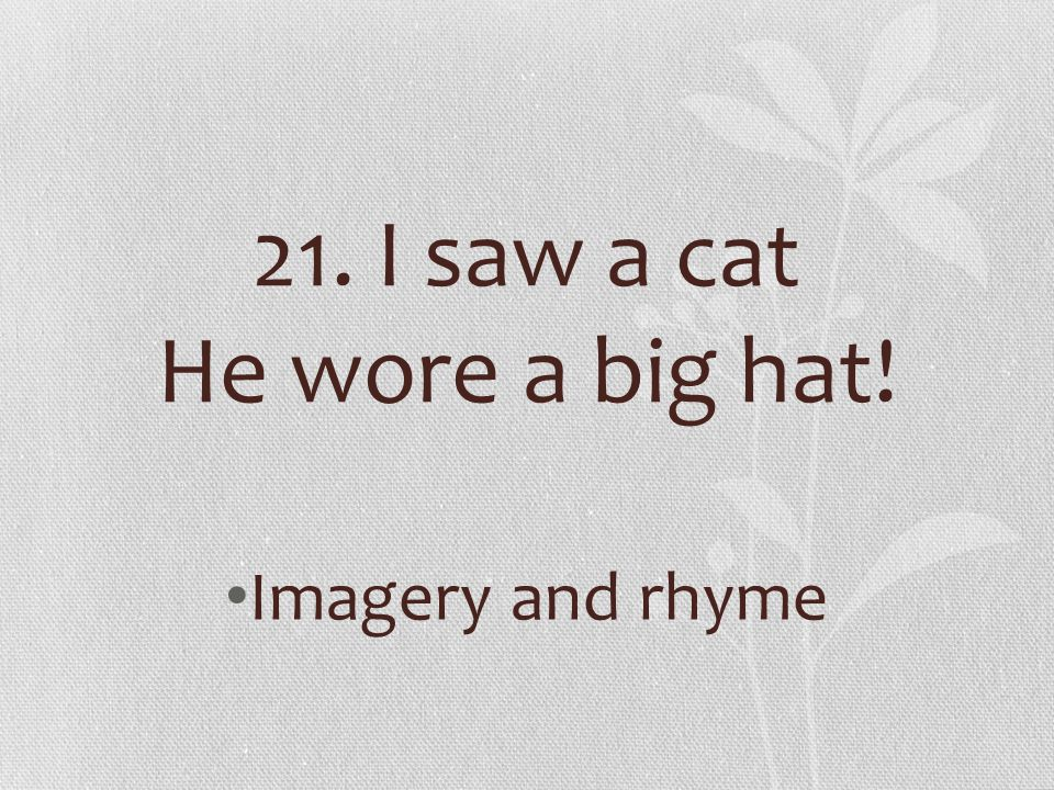 21. I saw a cat He wore a big hat! Imagery and rhyme