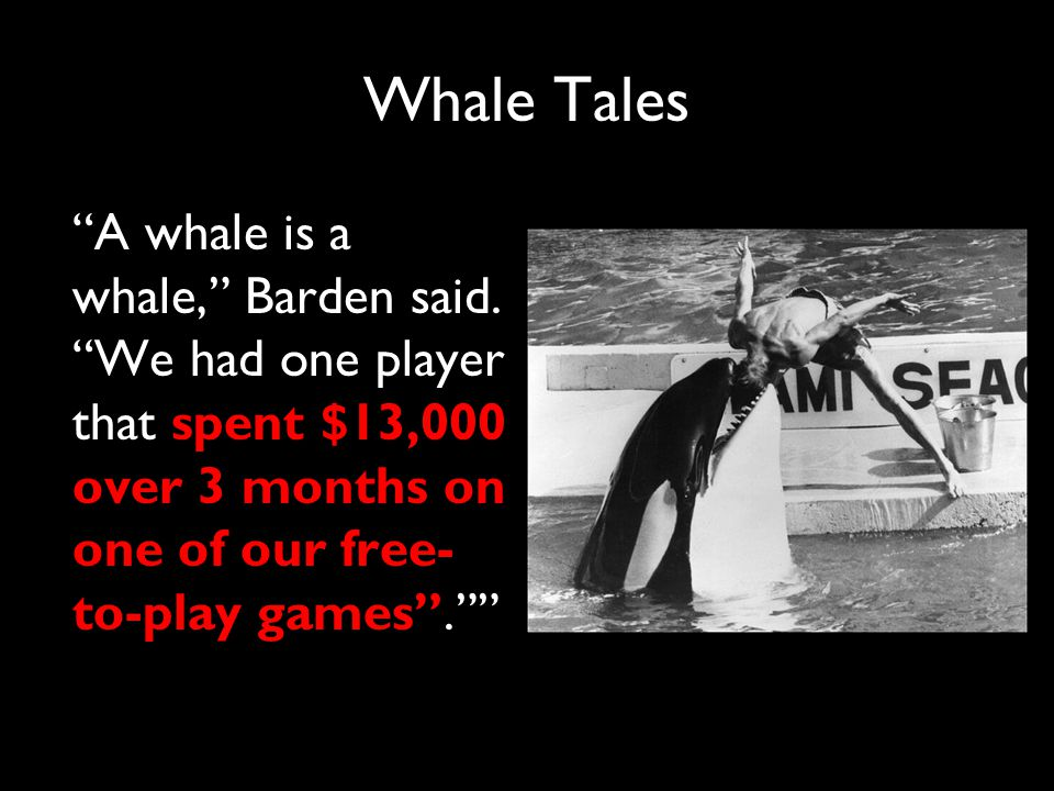 Whale Tales A whale is a whale, Barden said.