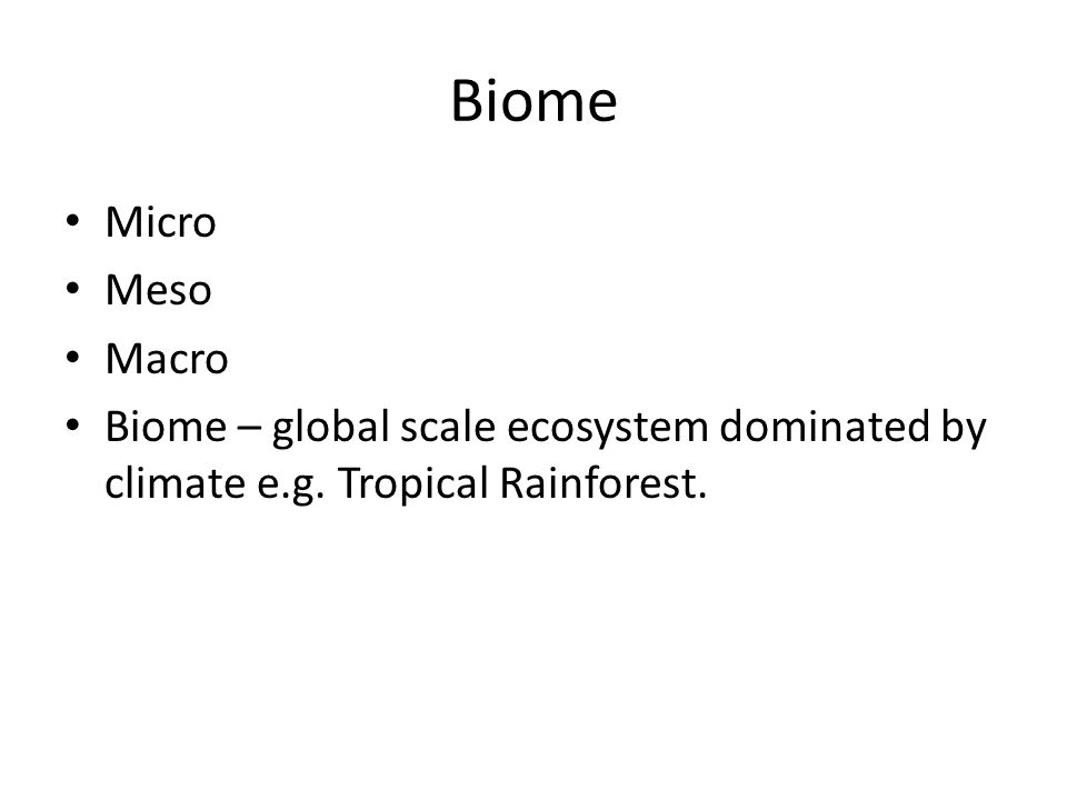 Biome Micro Meso Macro Biome – global scale ecosystem dominated by climate e.g. Tropical Rainforest.