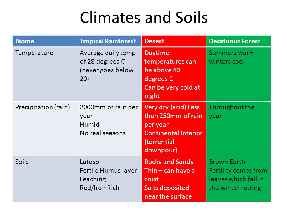 Climates and Soils BiomeTropical RainforestDesertDeciduous Forest TemperatureAverage daily temp of 28 degrees C (never goes below 20) Daytime temperat