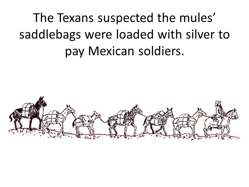 The Mexicans attacked the train of donkeys expecting to find the saddlebags filled with silver.