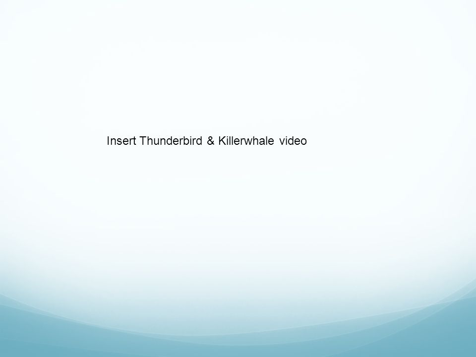 Insert Thunderbird & Killerwhale video