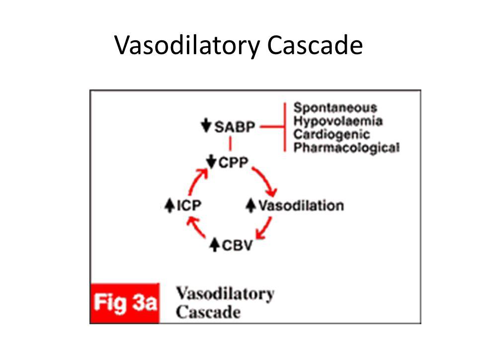 Vasodilatory Cascade