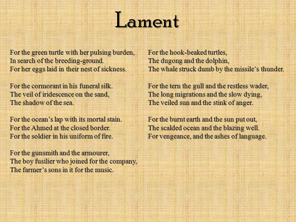 1.Lament – for the damages created by humans to the environment and eco-sys tems (including impacts to humans) 2.Sorrow & regret of the foolishness/ inhumanity of humans 3.Failure of communication, breakdown of civilised behaviour.