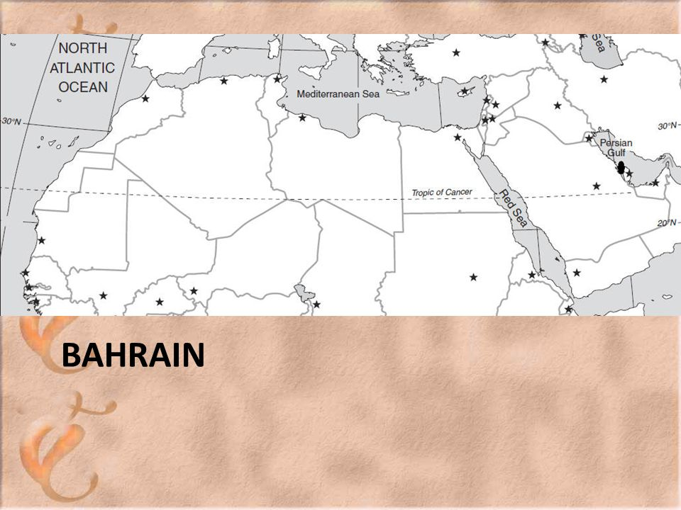 The Situation Bahrain s Sunni monarchy looks particularly vulnerable in the face of an increasingly restless Shiite majority.