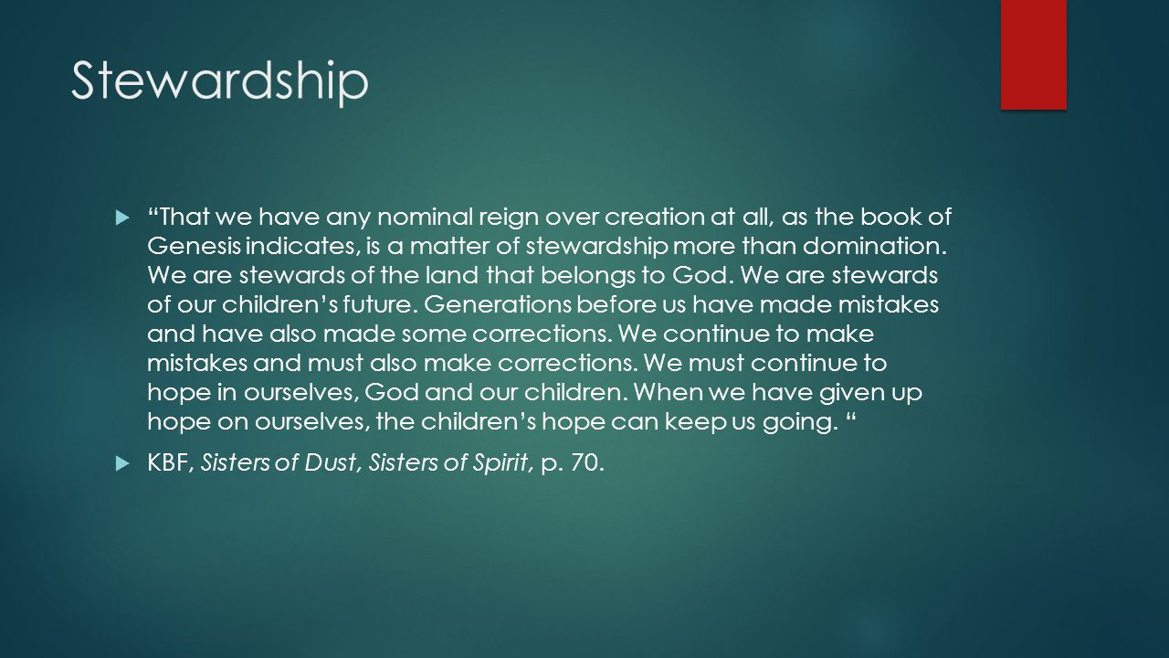 Stewardship  That we have any nominal reign over creation at all, as the book of Genesis indicates, is a matter of stewardship more than domination.