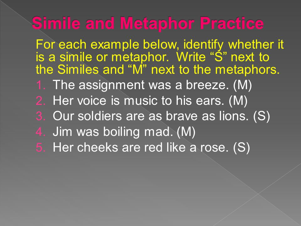 """For each example below, identify whether it is a simile or metaphor. Write """"S"""" next to the Similes and """"M"""" next to the metaphors. 1. The assignment wa"""