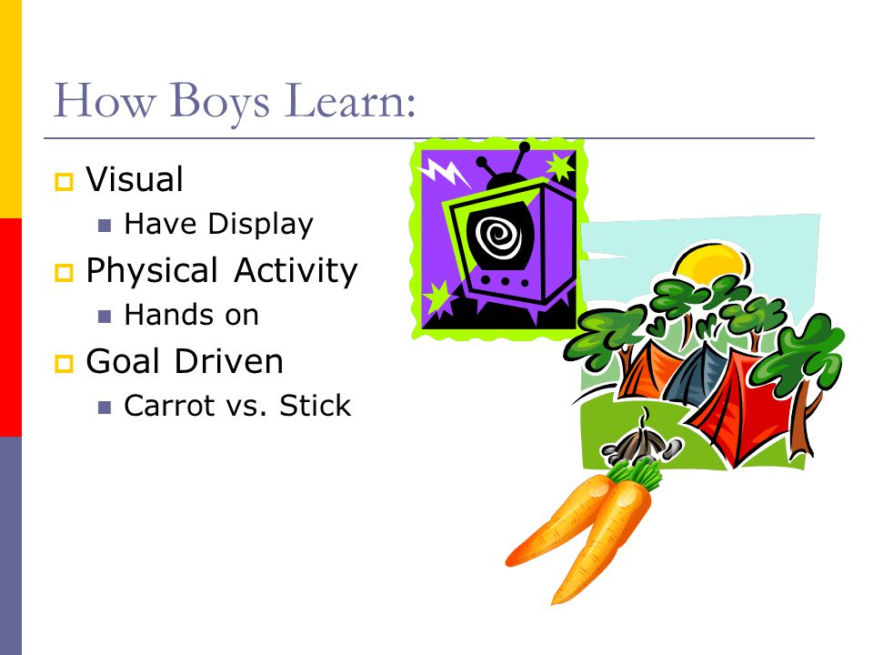 How Boys Learn:  Visual Have Display  Physical Activity Hands on  Goal Driven Carrot vs. Stick