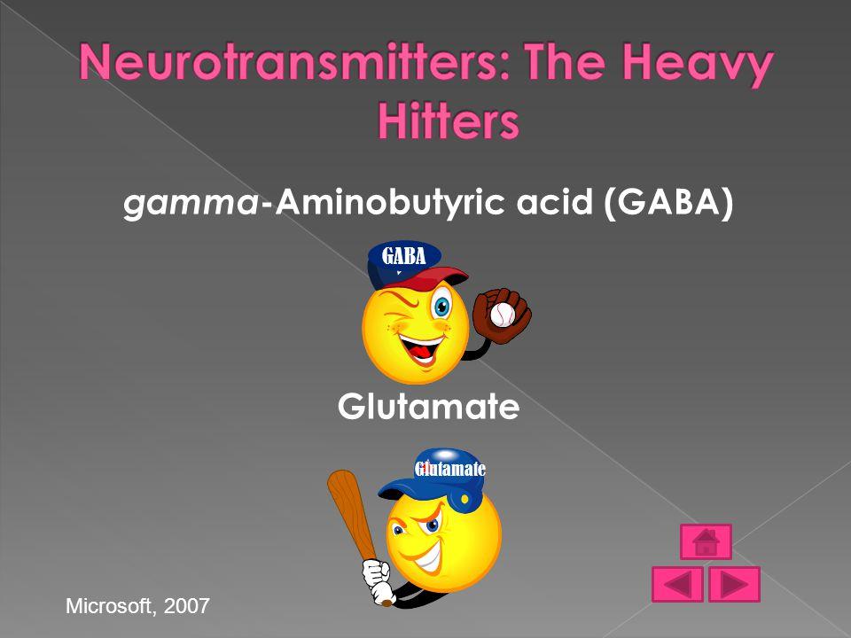 gamma -Aminobutyric acid (GABA) Glutamate GABA Glutamate Microsoft, 2007