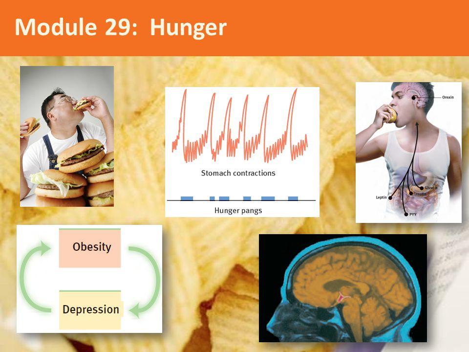 Module 29: Hunger