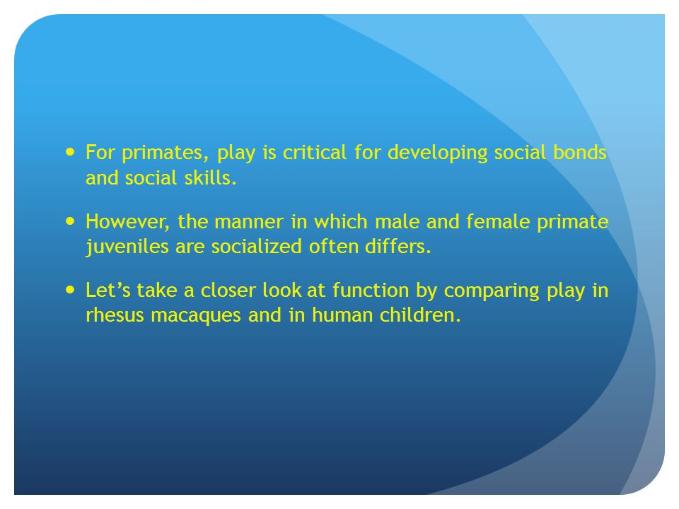 For primates, play is critical for developing social bonds and social skills. However, the manner in which male and female primate juveniles are socia