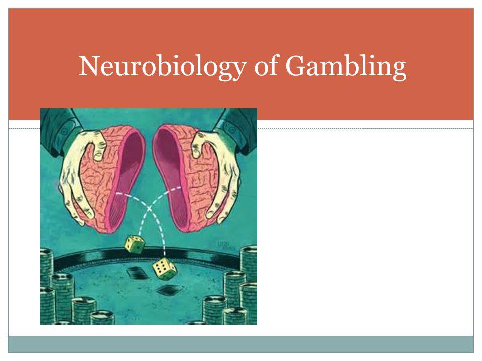Neurobiology of Gambling