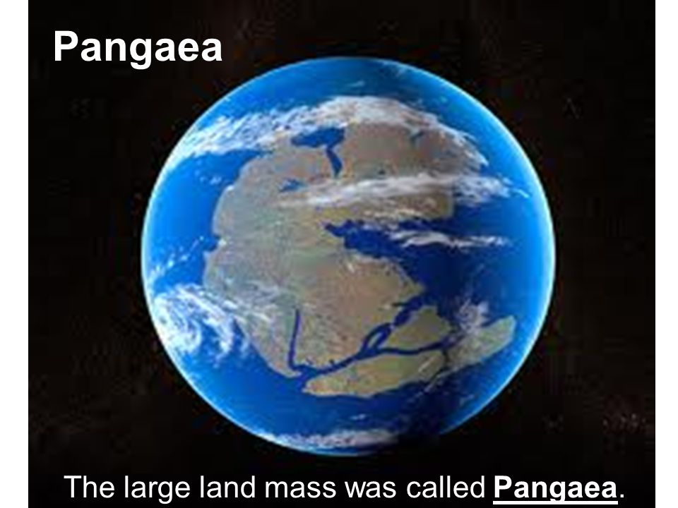 The large land mass was called Pangaea. Pangaea
