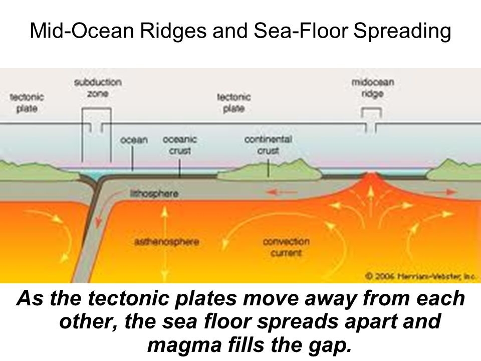 Mid-Ocean Ridges and Sea-Floor Spreading As the tectonic plates move away from each other, the sea floor spreads apart and magma fills the gap.